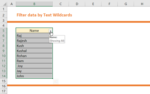 How to Filter Data by Text Wildcards 2