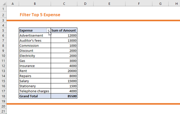 How to Filter Top 5 Expense Report in Pivot Table 2